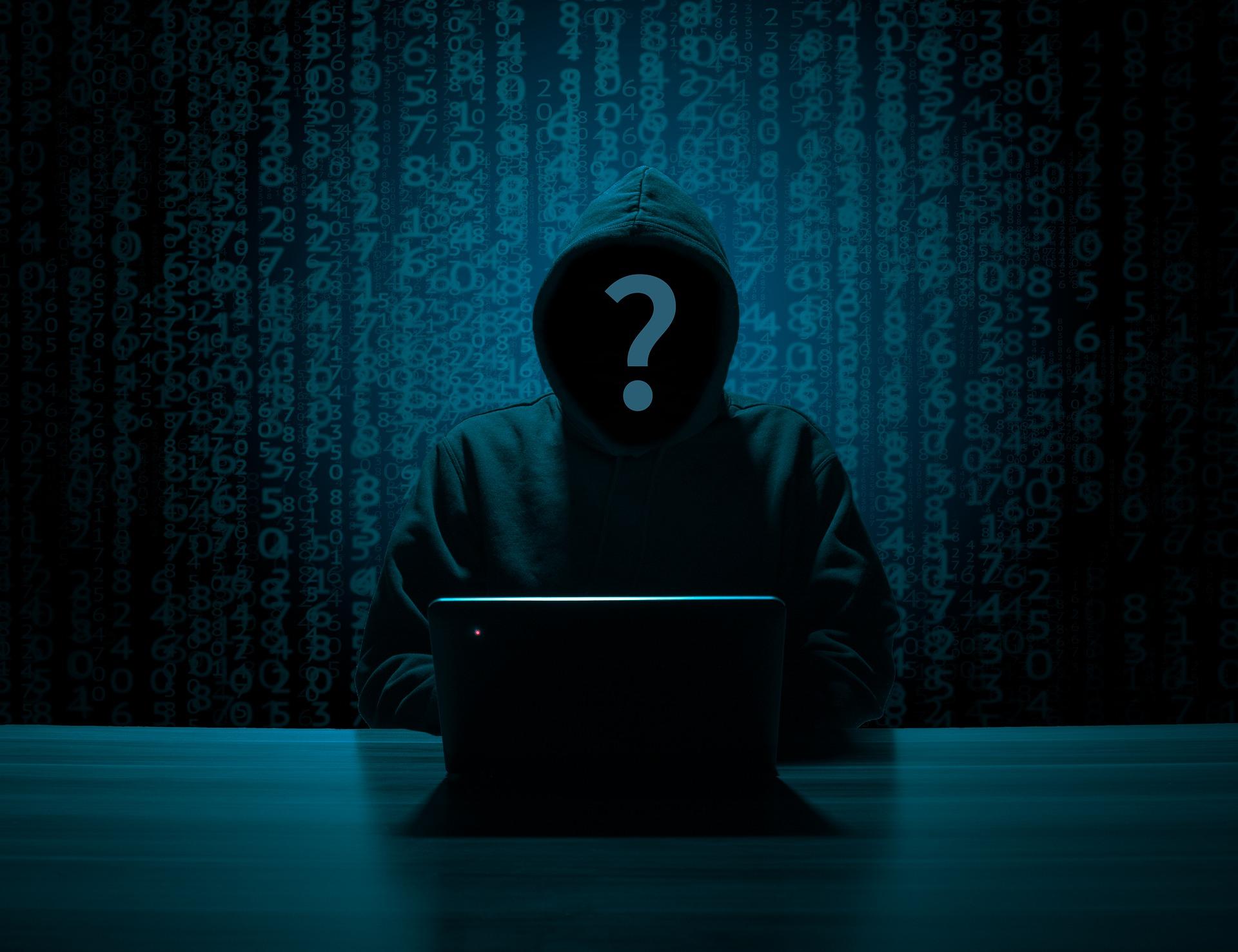Famoso pirata informatico offre 100mila$ ad altri hacker per nuovi attacchi.